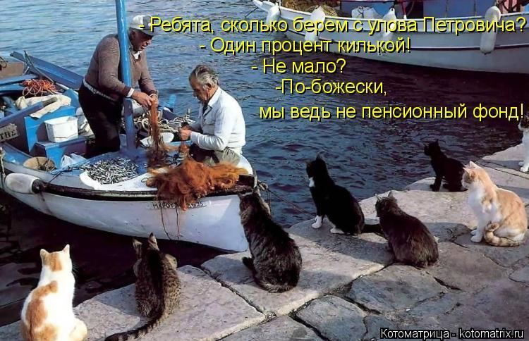 Котоматрица: - Ребята, сколько берем с улова Петровича? - Один процент килькой! - Не мало? -По-божески,  мы ведь не пенсионный фонд!