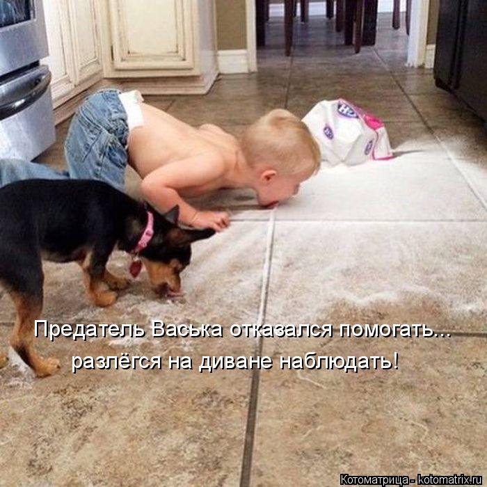 Котоматрица: Предатель Васька отказался помогать... разлёгся на диване наблюдать!