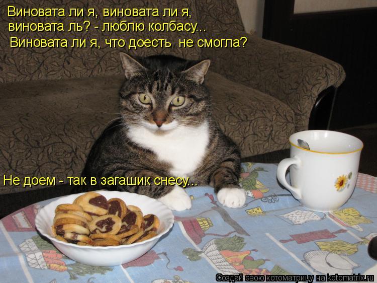 Котоматрица: Виновата ли я, виновата ли я,  виновата ль? - люблю колбасу... Виновата ли я, что доесть  не смогла? Не доем - так в загашик снесу...