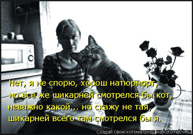 Котоматрица: неважно какой... но скажу не тая, шикарней всего там смотрелся бы я. Нет, я не спорю, хорош натюрморт, но все же шикарней смотрелся бы кот, но вс