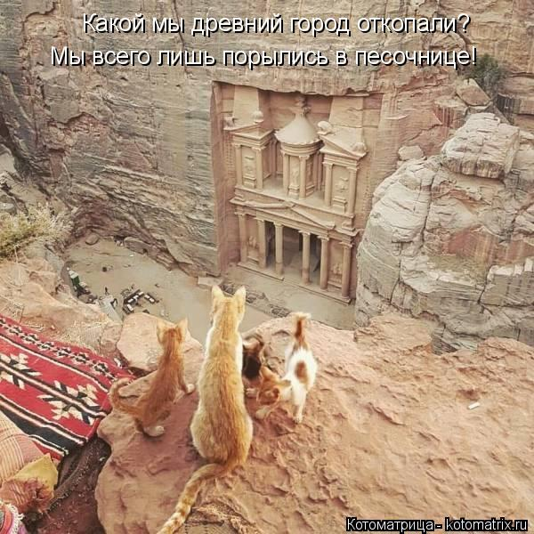 Котоматрица: Какой мы древний город откопали? Мы всего лишь порылись в песочнице!