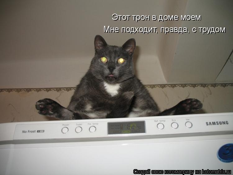Котоматрица: Мне подходит, правда, с трудом Этот трон в доме моем