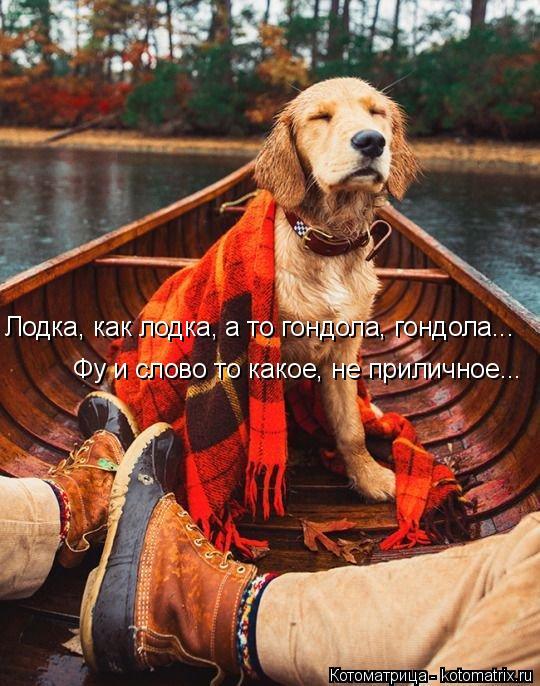 Котоматрица: Лодка, как лодка, а то гондола, гондола... Фу и слово то какое, не приличное...