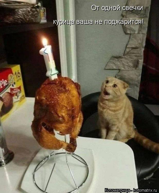 Котоматрица: От одной свечки курица ваша не поджарится!