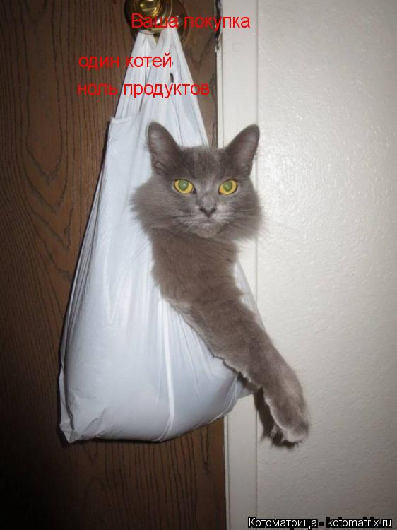 Котоматрица: Ваша покупка один котей ноль продуктов