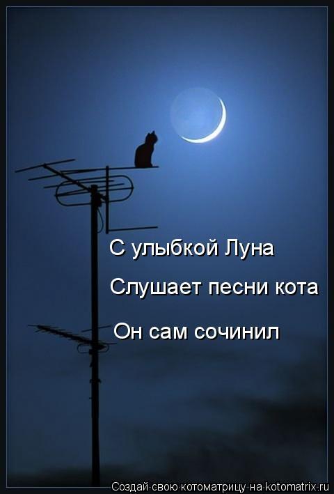 Котоматрица: С улыбкой Луна Слушает песни кота Он сам сочинил