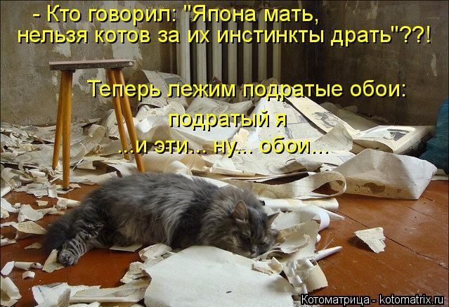 """Котоматрица: - Кто говорил: """"Япона мать, нельзя котов за их инстинкты драть""""??! подратый я  ...и эти... ну... обои... Теперь лежим подратые обои:"""