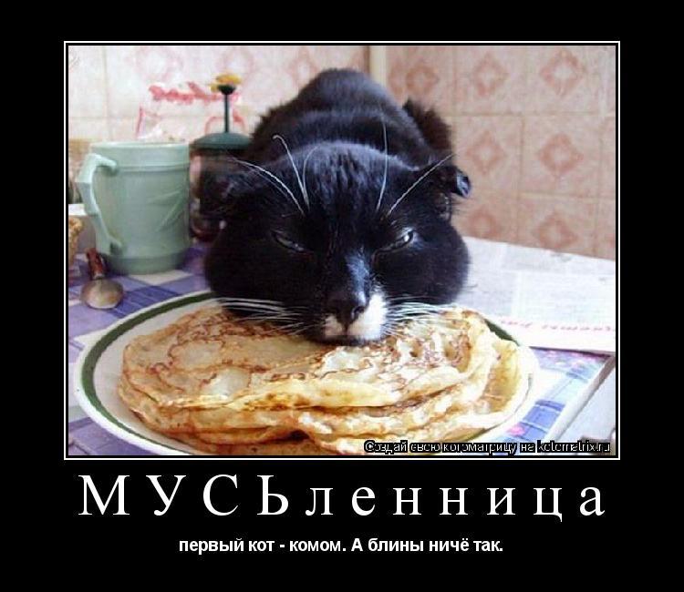 Котоматрица: МУСЬленница первый кот - комом. А блины ничё так.