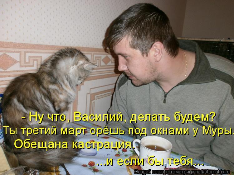 Котоматрица: - Ну что, Василий, делать будем? Ты третий март орёшь под окнами у Муры. Обещана кастрация. ...и если бы тебя...