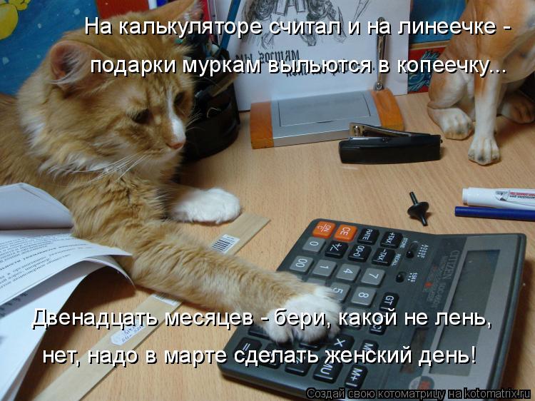 Котоматрица: На калькуляторе считал и на линеечке -  подарки муркам выльются в копеечку... Двенадцать месяцев - бери, какой не лень, нет, надо в марте сдела?
