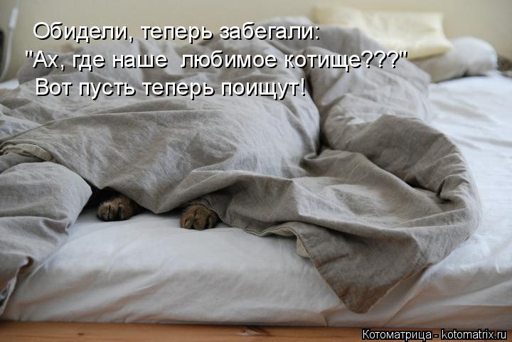 """Котоматрица: Обидели, теперь забегали: """"Ах, где наше  любимое котище???"""" Вот пусть теперь поищут!"""