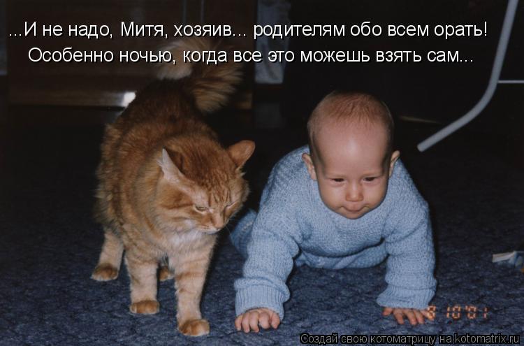 Котоматрица: ...И не надо, Митя, хозяив... родителям обо всем орать! Особенно ночью, когда все это можешь взять сам...