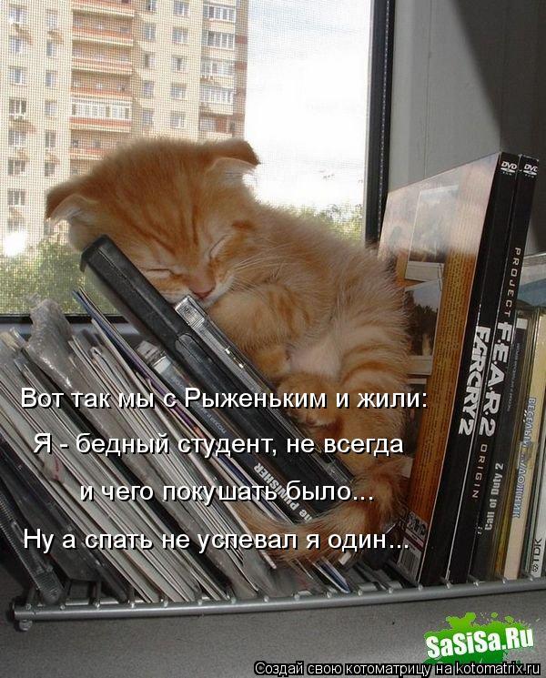 Котоматрица: Вот так мы с Рыженьким и жили: Я - бедный студент, не всегда и чего покушать было... Ну а спать не успевал я один...