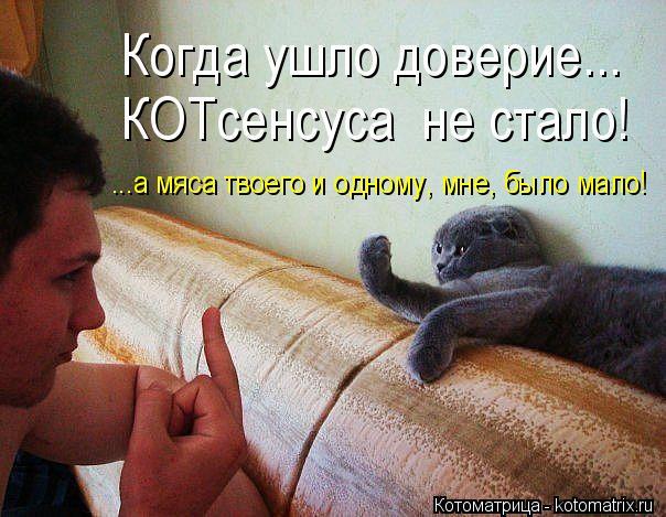 Котоматрица: Когда ушло доверие... КОТсенсуса  не стало! ...а мяса твоего и одному, мне, было мало!