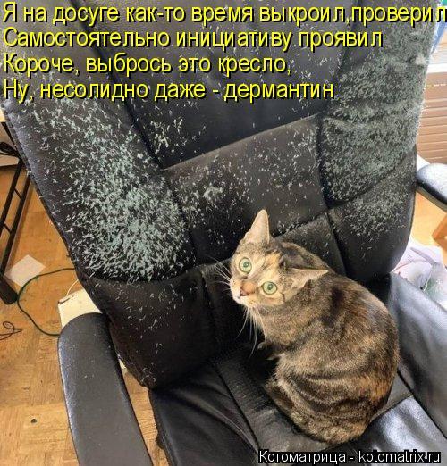 Котоматрица: Я на досуге как-то время выкроил,проверил Самостоятельно инициативу проявил Короче, выбрось это кресло, Ну, несолидно даже - дермантин