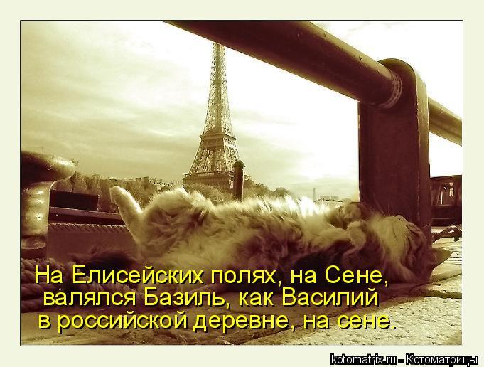 Котоматрица: валялся Базиль, как Василий в российской деревне, на сене. На Елисейских полях, на Сене,