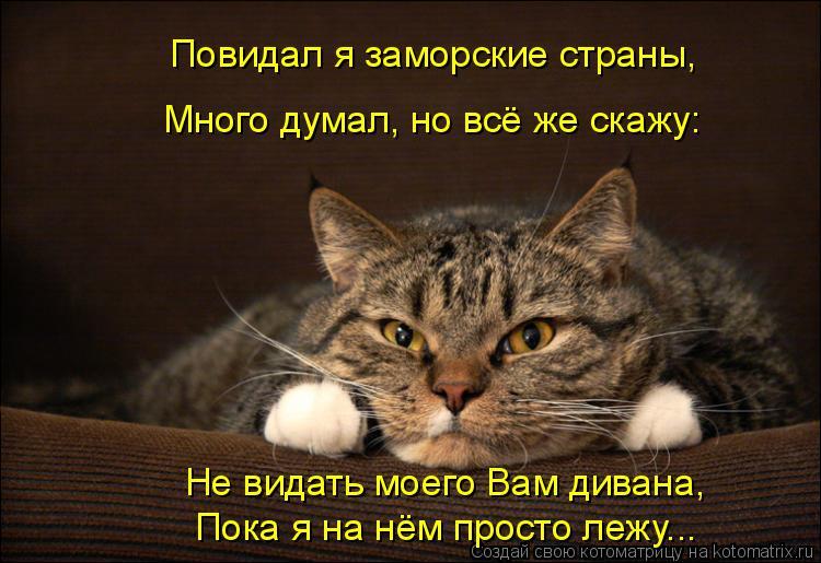 Котоматрица: Повидал я заморские страны, Много думал, но всё же скажу: Не видать моего Вам дивана, Пока я на нём просто лежу...