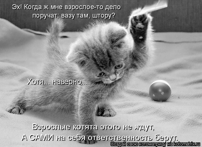Котоматрица: Взрослые котята этого не ждут, Хотя... наверно... А САМИ на себя ответственность берут. Эх! Когда ж мне взрослое-то дело  поручат: вазу там, штор