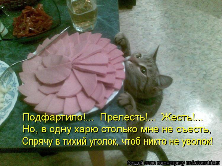 Котоматрица: Подфартило!...  Прелесть!...  Жесть!... Но, в одну харю столько мне не съесть, Спрячу в тихий уголок, чтоб никто не уволок!