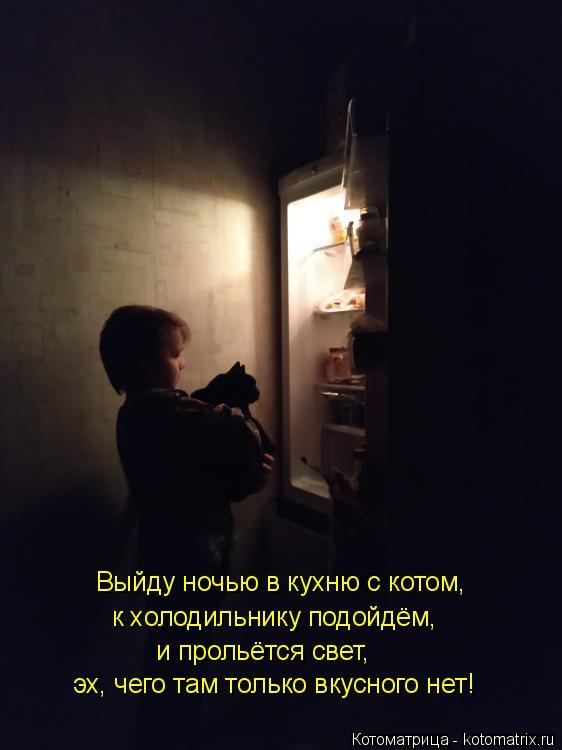 Котоматрица: Выйду ночью в кухню с котом, к холодильнику подойдём, и прольётся свет, эх, чего там только вкусного нет!