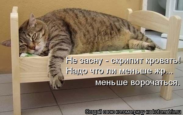 Котоматрица: Не засну - скрипит кровать! Надо что ли меньше жр... меньше ворочаться.
