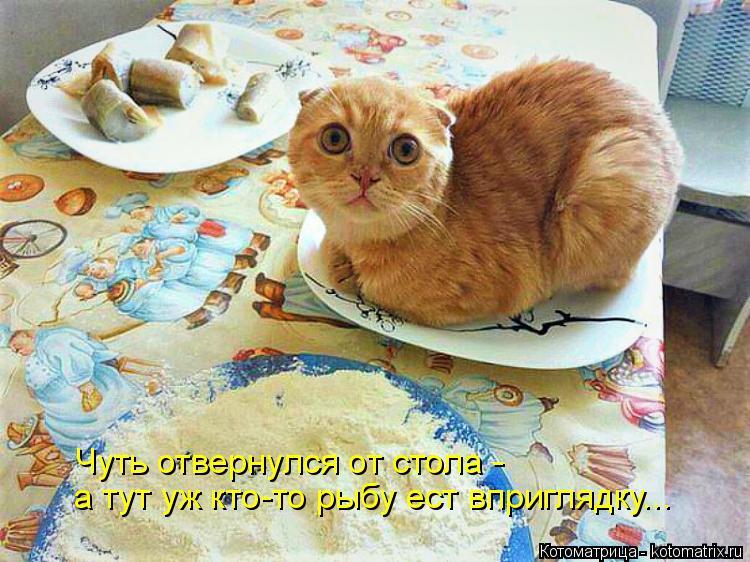 Котоматрица: а тут уж кто-то рыбу ест вприглядку... Чуть отвернулся от стола -