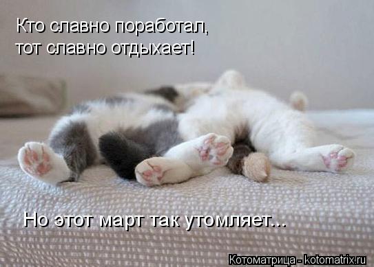 Котоматрица: Кто славно поработал,  тот славно отдыхает! Но этот март так утомляет...