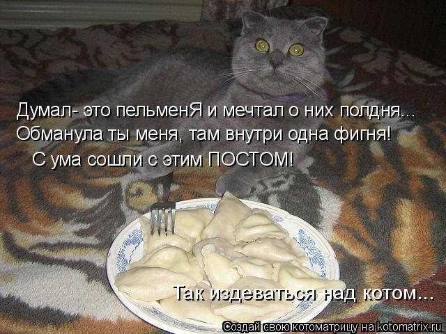 Котоматрица: Думал- это пельменЯ и мечтал о них полдня... Обманула ты меня, там внутри одна фигня! С ума сошли с этим ПОСТОМ!  Так издеваться над котом...