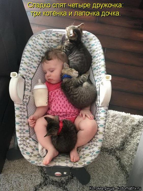 Котоматрица: Сладко спят четыре дружочка: три котёнка и лапочка дочка.