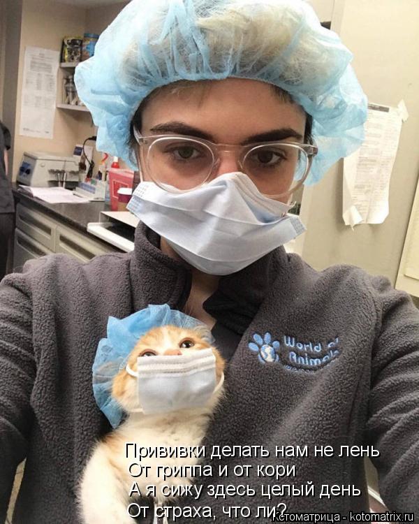 Котоматрица: Прививки делать нам не лень От гриппа и от кори А я сижу здесь целый день От страха, что ли?