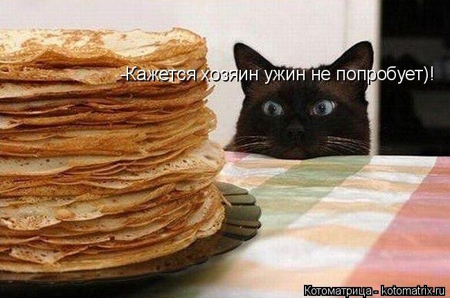 Котоматрица: -Кажется хозяин ужин не попробует)!