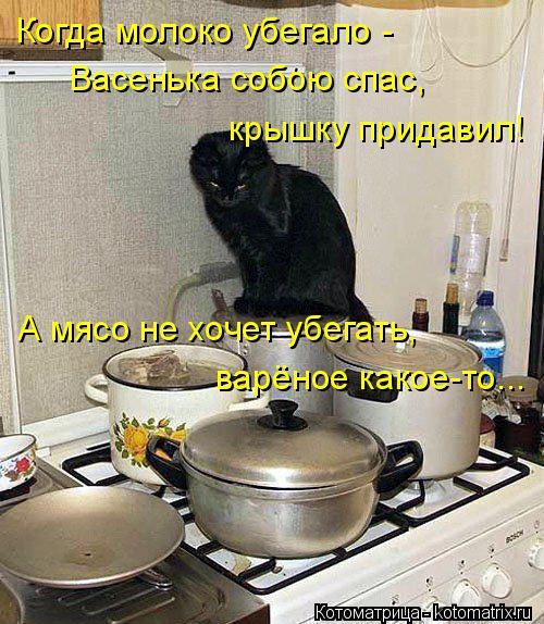 Котоматрица: Когда молоко убегало - Васенька собою спас, крышку придавил! А мясо не хочет убегать, варёное какое-то...