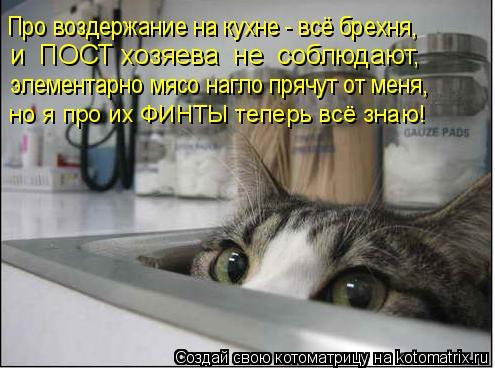 Котоматрица: Про воздержание на кухне - всё брехня, и  ПОСТ хозяева  не  соблюдают, элементарно мясо нагло прячут от меня, но я про их ФИНТЫ теперь всё знаю!
