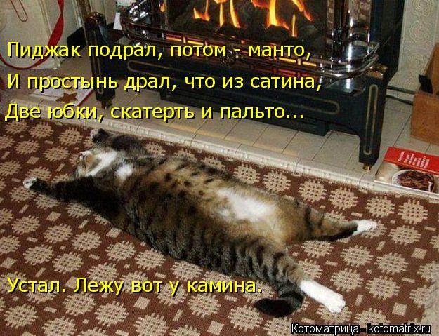Котоматрица: Пиджак подрал, потом - манто, И простынь драл, что из сатина, Две юбки, скатерть и пальто... Устал. Лежу вот у камина.