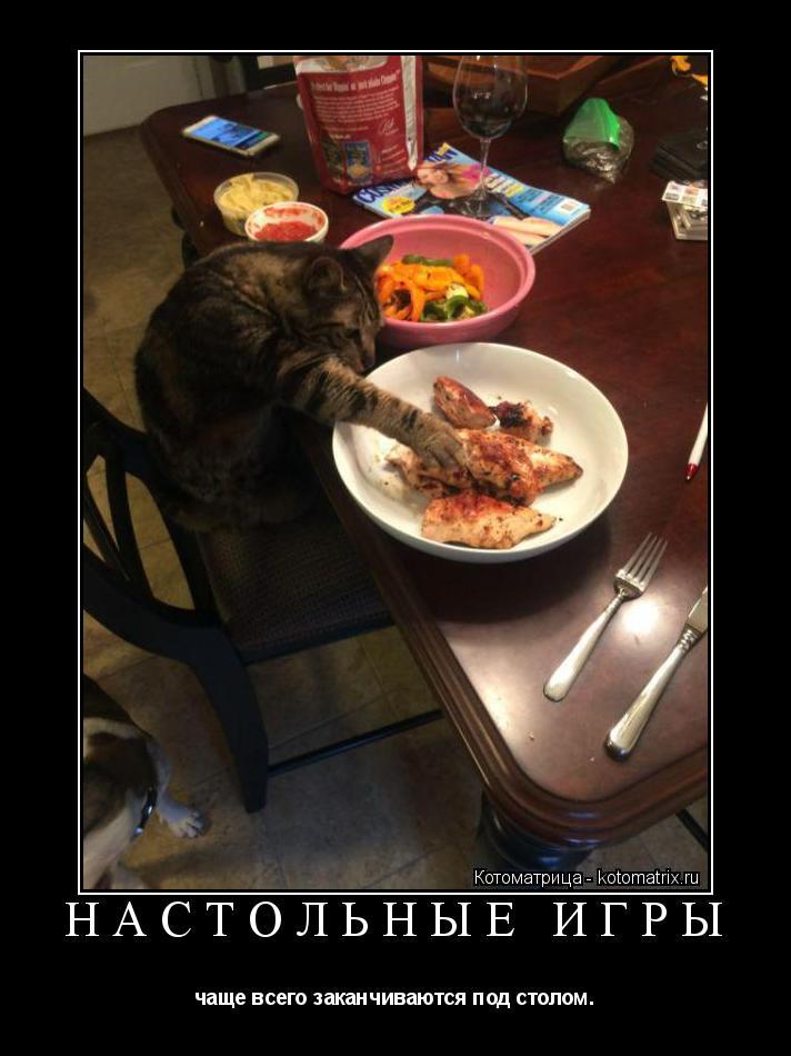 Котоматрица: НАСТОЛЬНЫЕ ИГРЫ чаще всего заканчиваются под столом.