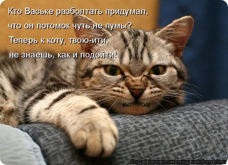 Котоматрица: Кто Ваське разболтать придумал, что он потомок чуть не пумы? Теперь к коту, твою-ити,  не знаешь, как и подойти!