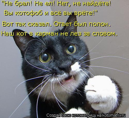 """Котоматрица: """"Не брал! Не ел! Нет, не найдёте! Вы котофоб и всё вы врёте!"""" Наш кот в карман не лез за словом. Вот так сказал. Ответ был полон."""