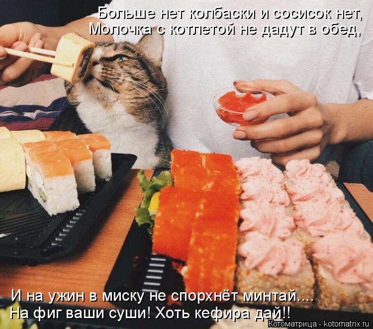 Котоматрица: Больше нет колбаски и сосисок нет, Молочка с котлетой не дадут в обед, На фиг ваши суши! Хоть кефира дай!! И на ужин в миску не спорхнёт минтай.