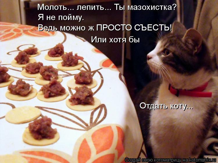 Котоматрица: Я не пойму. Ведь можно ж ПРОСТО СЪЕСТЬ!  Или хотя бы Молоть... лепить... Ты мазохистка? Отдать коту...