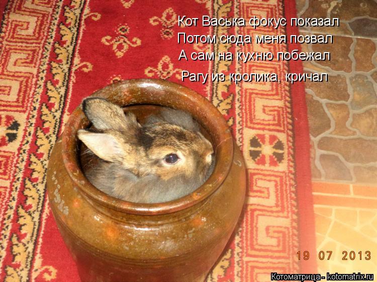 Котоматрица: Кот Васька фокус показал Потом сюда меня позвал А сам на кухню побежал Рагу из кролика, кричал