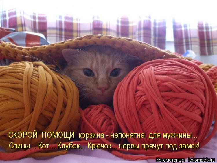Котоматрица: СКОРОЙ  ПОМОЩИ  корзина - непонятна  для мужчины... Спицы... Кот... Клубок... Крючок... нервы прячут под замок!
