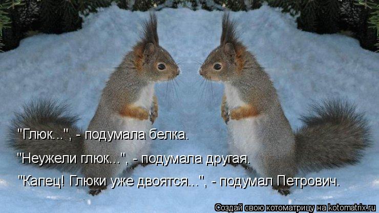 """Котоматрица: """"Капец! Глюки уже двоятся..."""", - подумал Петрович. """"Неужели глюк..."""", - подумала другая. """"Глюк..."""", - подумала белка."""