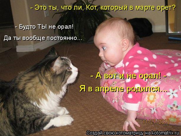 Котоматрица: - А вот и не орал! - Я в апреле родился... - Это ты, что ли, Кот, который в марте орет? - Будто ТЫ не орал! Да ты вообще постоянно...