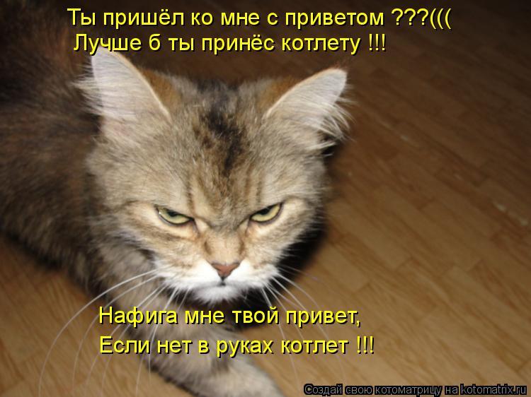 Котоматрица: Ты пришёл ко мне с приветом ???((( Лучше б ты принёс котлету !!! Нафига мне твой привет, Если нет в руках котлет !!!