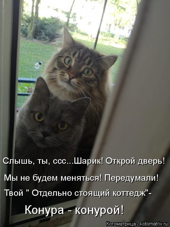 """Котоматрица: Слышь, ты, ссс...Шарик! Открой дверь!  Мы не будем меняться! Передумали! Твой """" Отдельно стоящий коттедж"""" Твой """" Отдельно стоящий коттедж""""- Конур"""