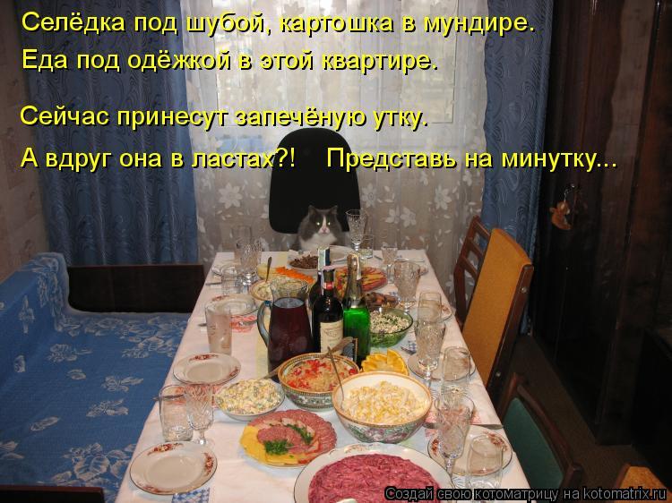 Котоматрица: Селёдка под шубой, картошка в мундире. Еда под одёжкой в этой квартире. Сейчас принесут запечёную утку. А вдруг она в ластах?!    Представь на ?
