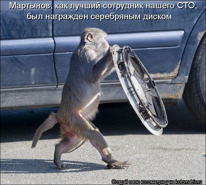 Котоматрица: Мартынов, как лучший сотрудник нашего СТО,  был награжден серебряным диском