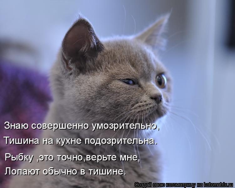 Котоматрица: Знаю совершенно умозрительно, Тишина на кухне подозрительна. Лопают обычно в тишине. Рыбку ,это точно,верьте мне,
