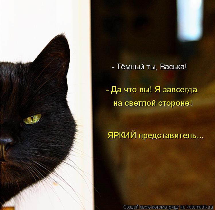 Котоматрица: - Тёмный ты, Васька!  - Да что вы! Я завсегда  на светлой стороне! ЯРКИЙ представитель...