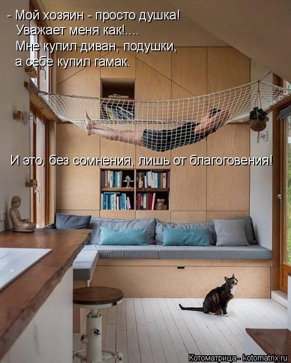 Котоматрица: - Мой хозяин - просто душка! Уважает меня как!.... Мне купил диван, подушки, а себе купил гамак. И это, без сомнения, лишь от благоговения!